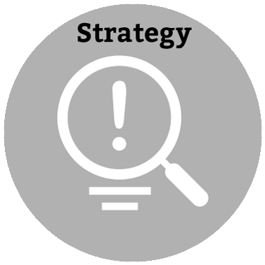 Web Strategy Consultation