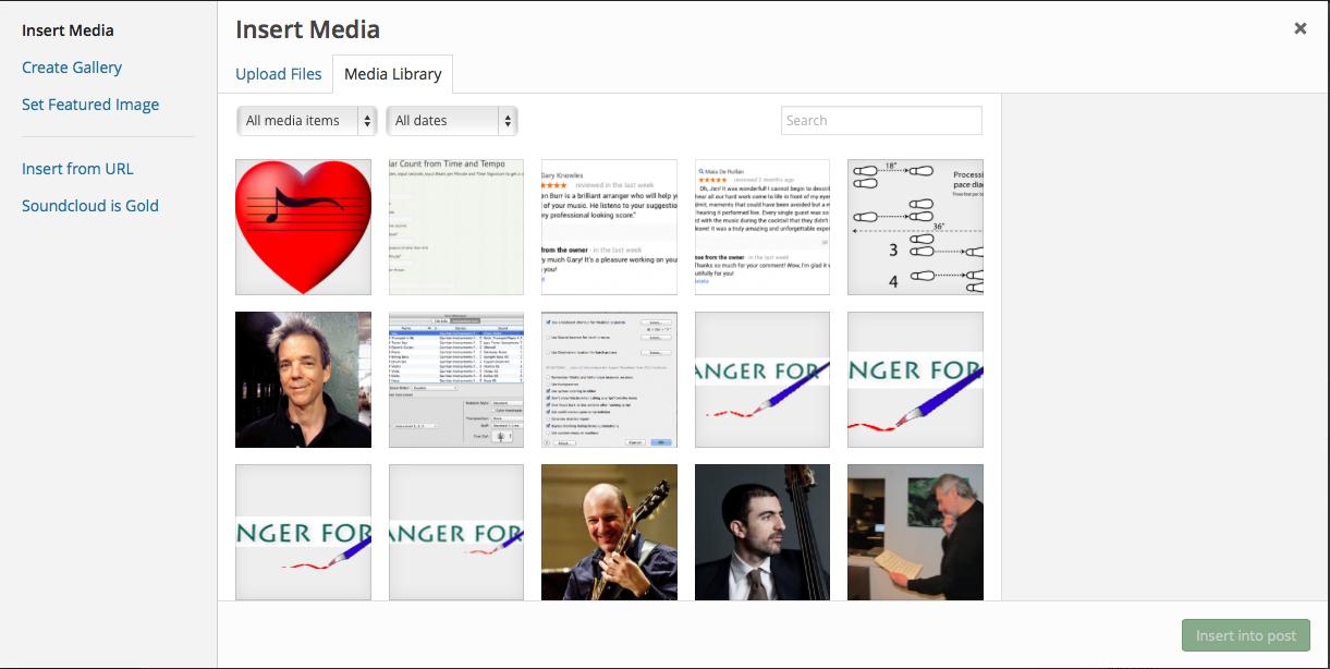 Insert Media Dialog screenshot
