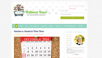 Wellness Decore Website
