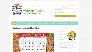 Wellness Decore Website